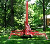 Lush green grass remains undisturbed while tree trimming is performed using our turf friendly spiderlift