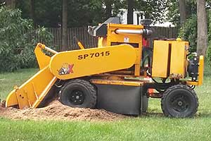 Stump Removal Services in South Jersey